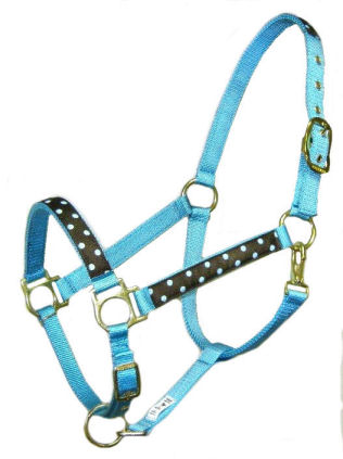 RMTurquoise Designer Halter with Brown Polka Dot Trim