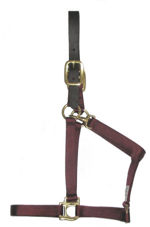 RM-BCNylon Halters with Leather Breakaway Crowns